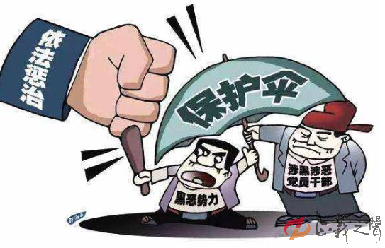"""<strong>孙小果案""""保护伞""""如何认定? 法律专家这样说</strong>"""