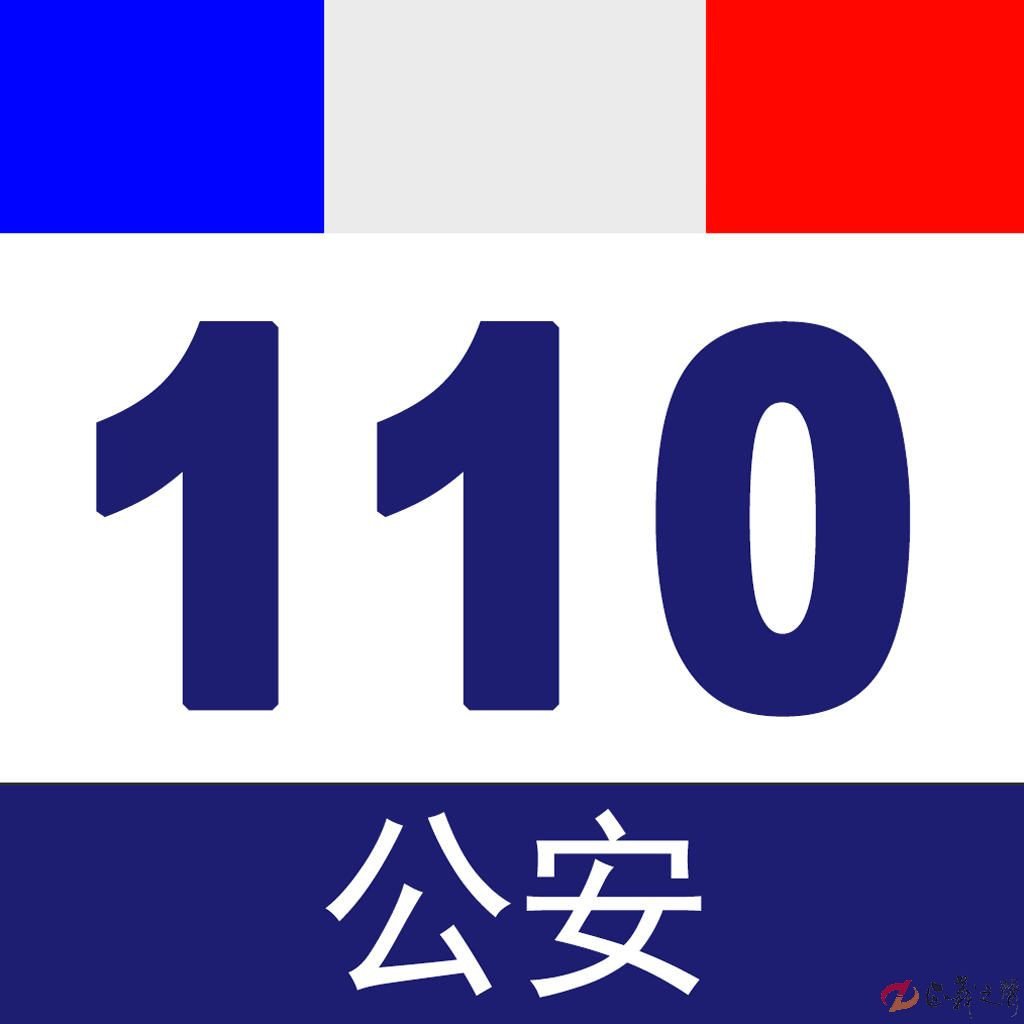 <strong>110極簡史:我們愛的承諾</strong>